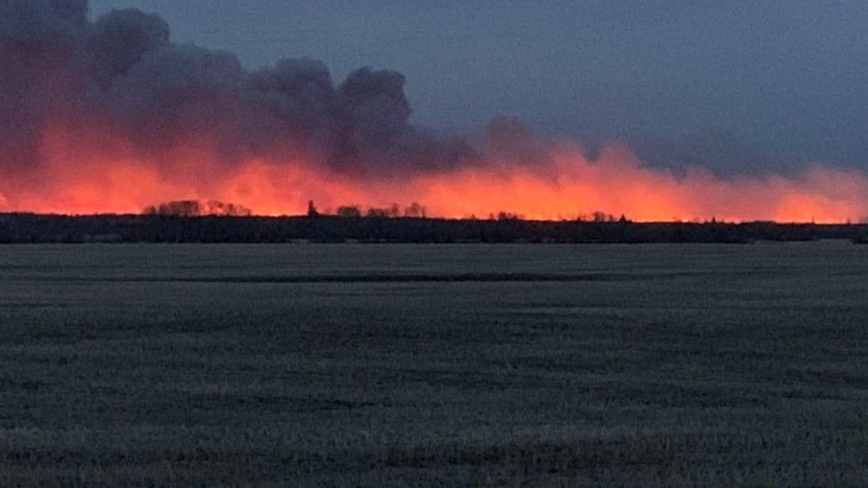 Un horizon de forêt au-dessus de laquelle une lumière rouge est reflétée sur des nuages de fumée dense près du sol avec un champ en avant-plan.