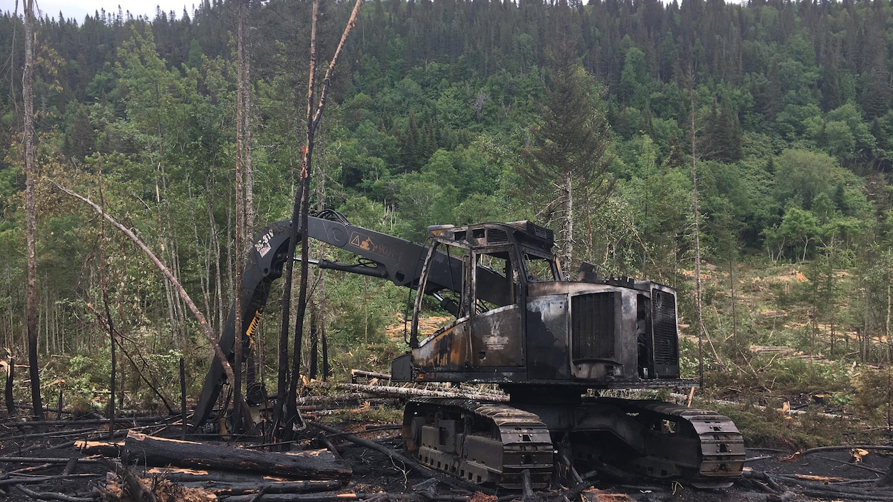feu forêt grosses roches