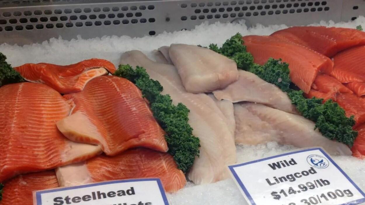 Étal de divers types de filets de poisson.