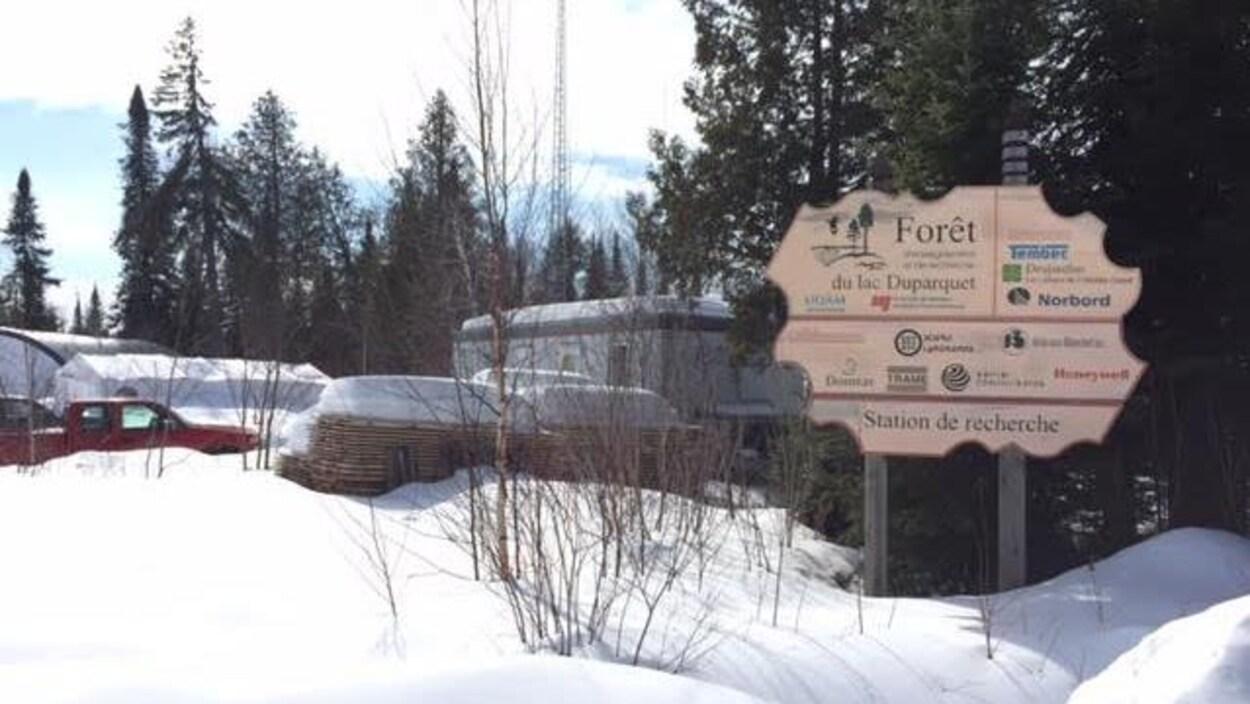 Forêt d'enseignement et de recherche du lac Duparquet