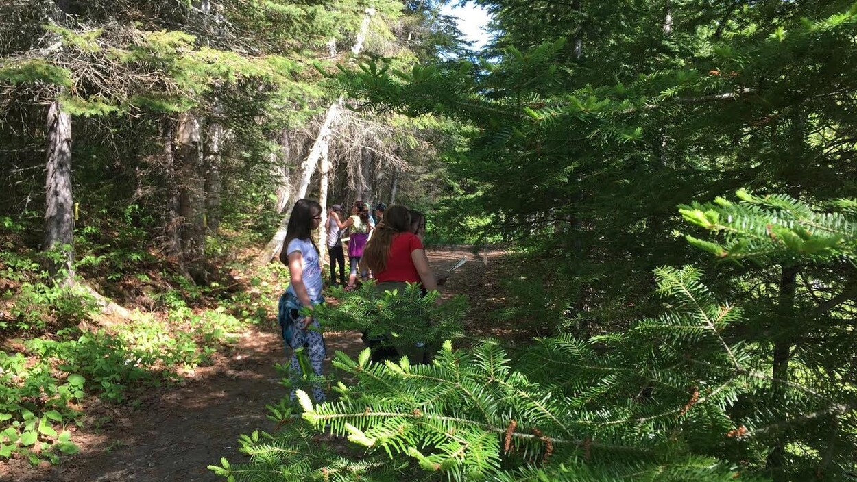 """Une journée """"forêt"""" était organisée mercredi pour les élèves de la 5e année du primaire du Témiscamingue."""