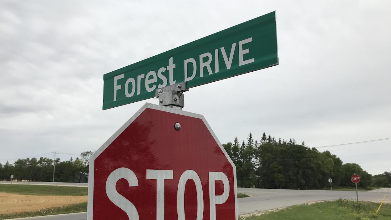 Un panneau d'arrêt surmonté du nom de la rue : Forest Drive.