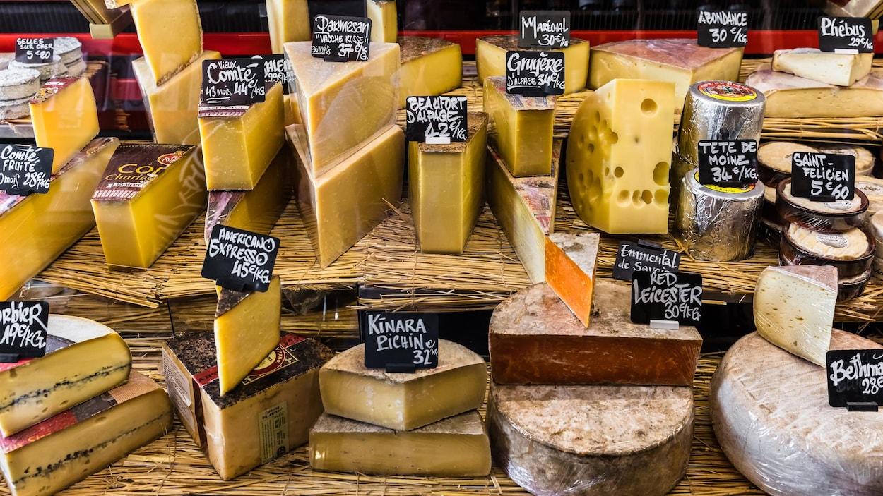 Un étalage de plusieurs fromages à pâte dure