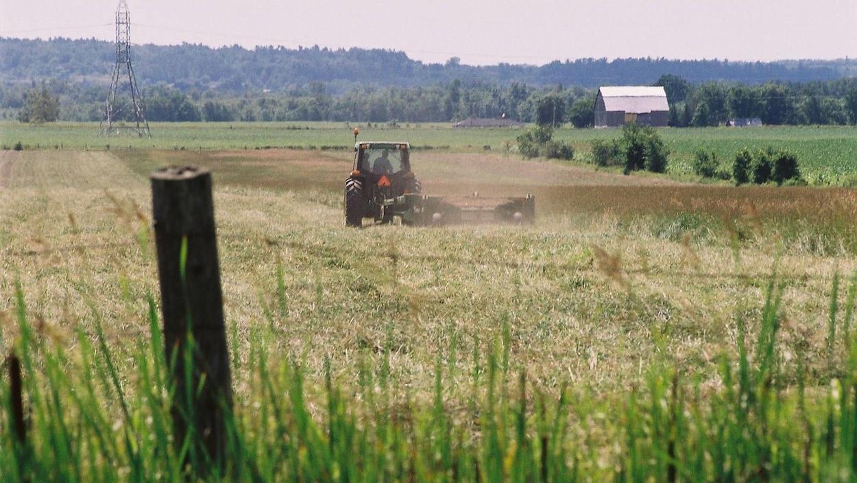 Une ferme de Gatineau
