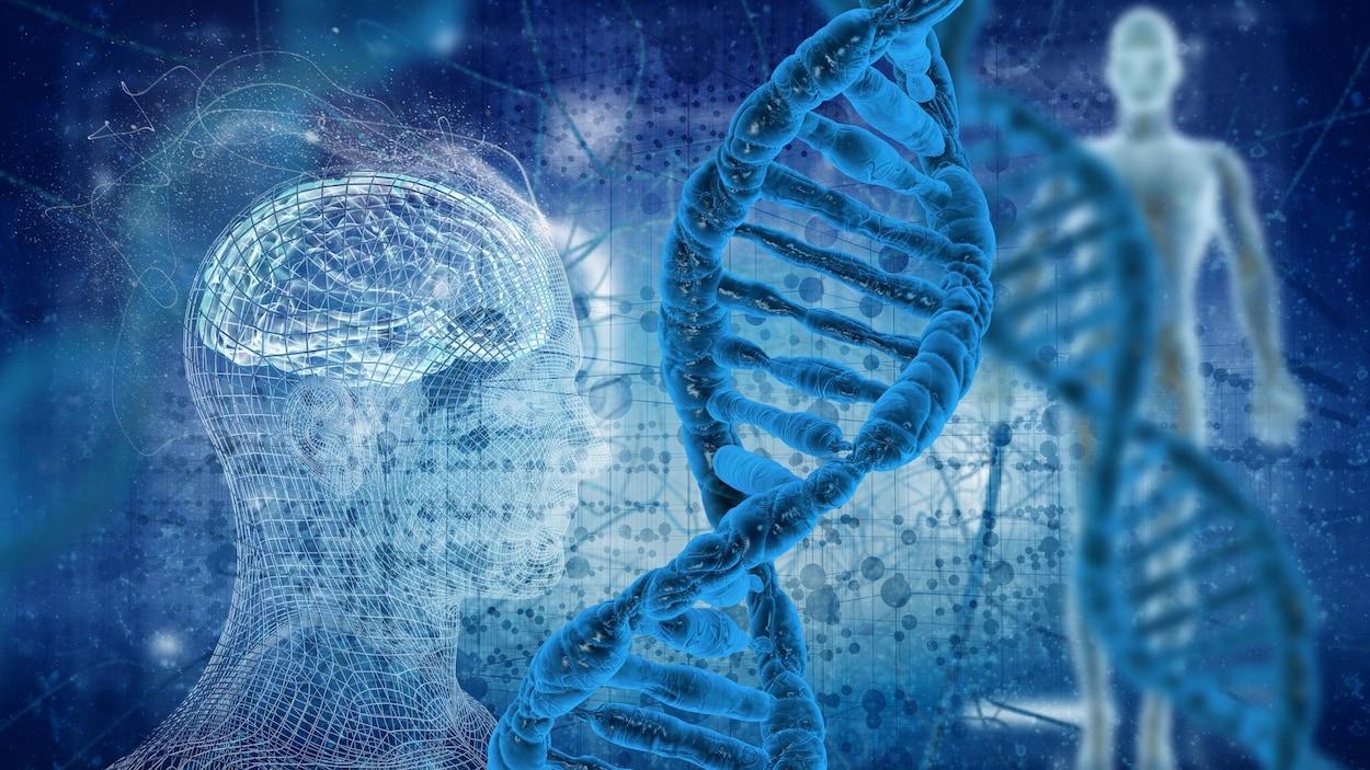 Un gène bleu foncé mis en avant-plan.