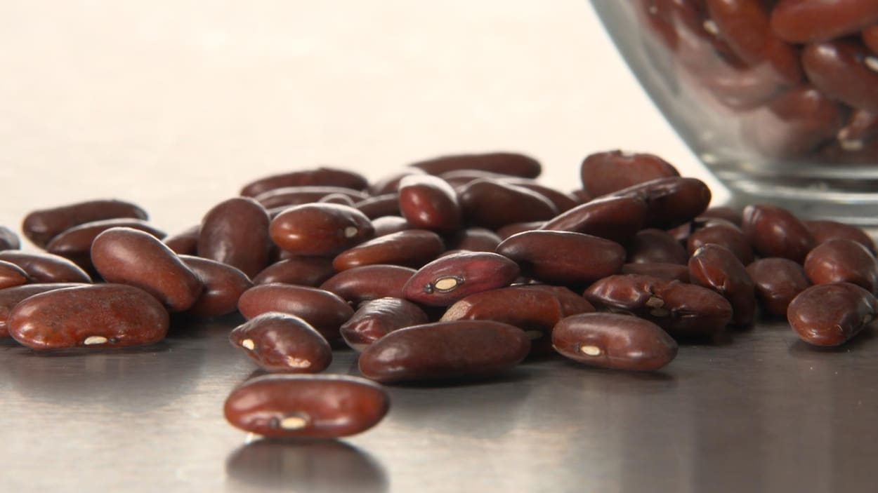 Gros plan sur une dizaine de fèves de haricots rouges déposées sur une table de métal.