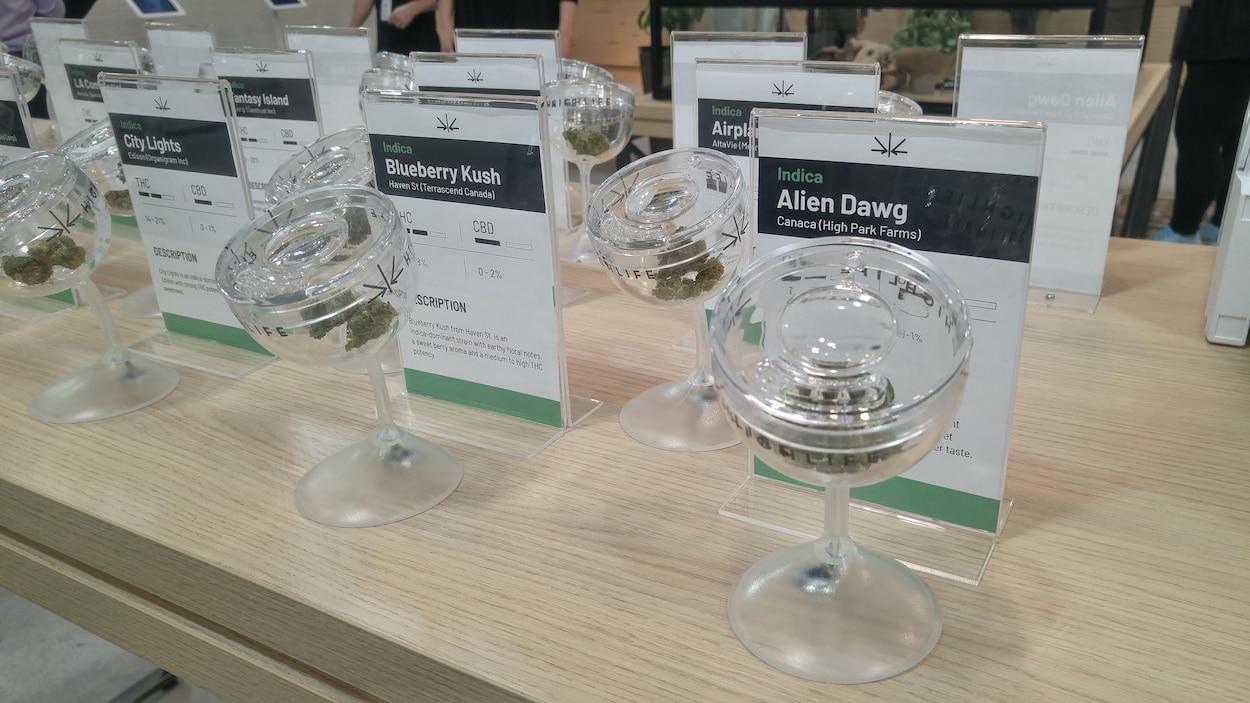 Un présentoir des différentes variétés de cannabis offertes aux clients.