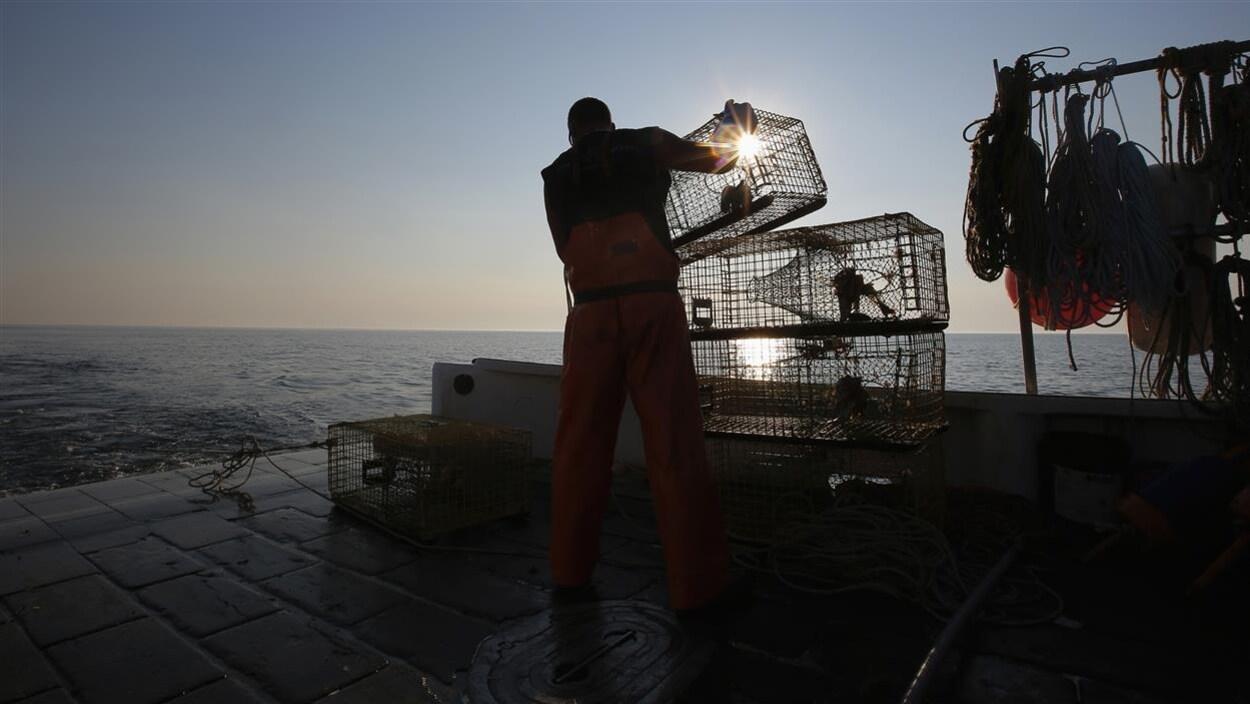Un pêcheur de homard prépare ses casiers sur le quai.