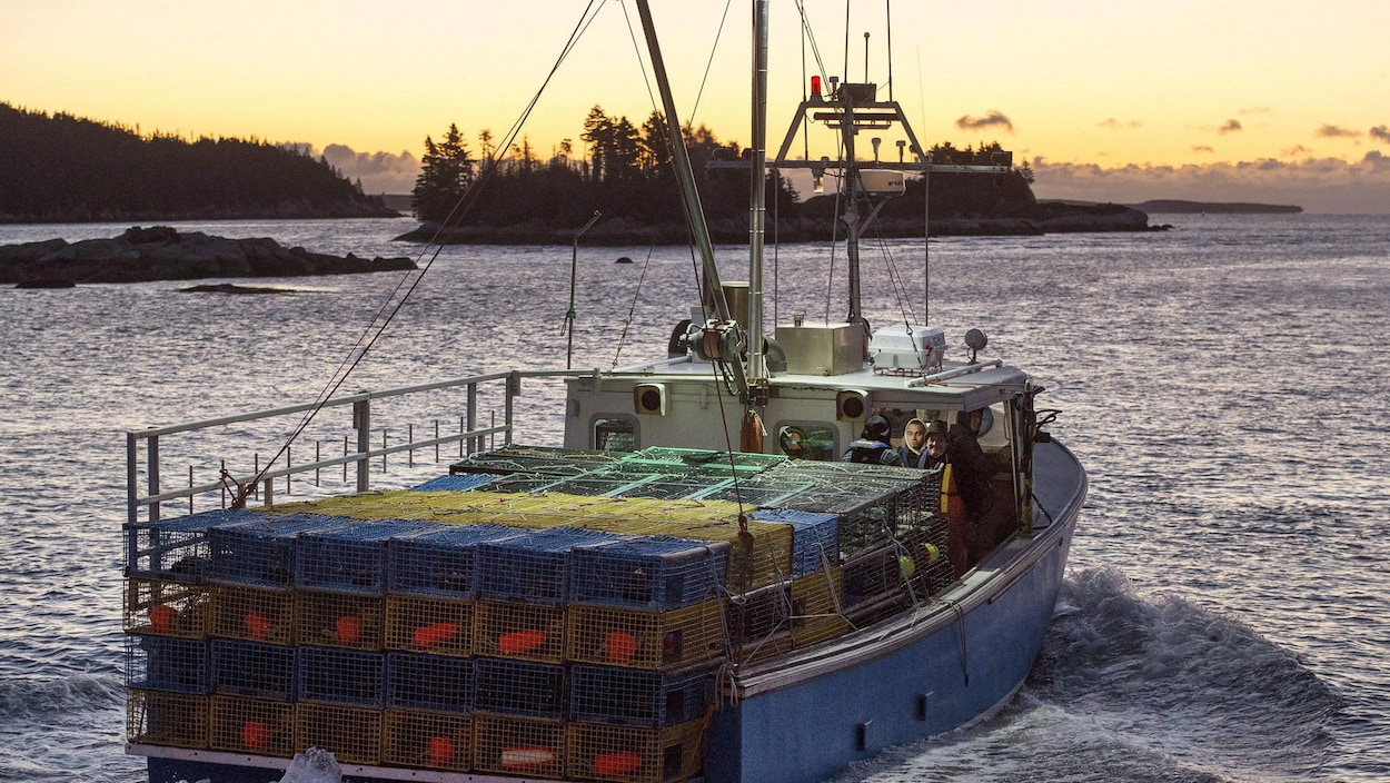 Un bateau de pêche au homard.