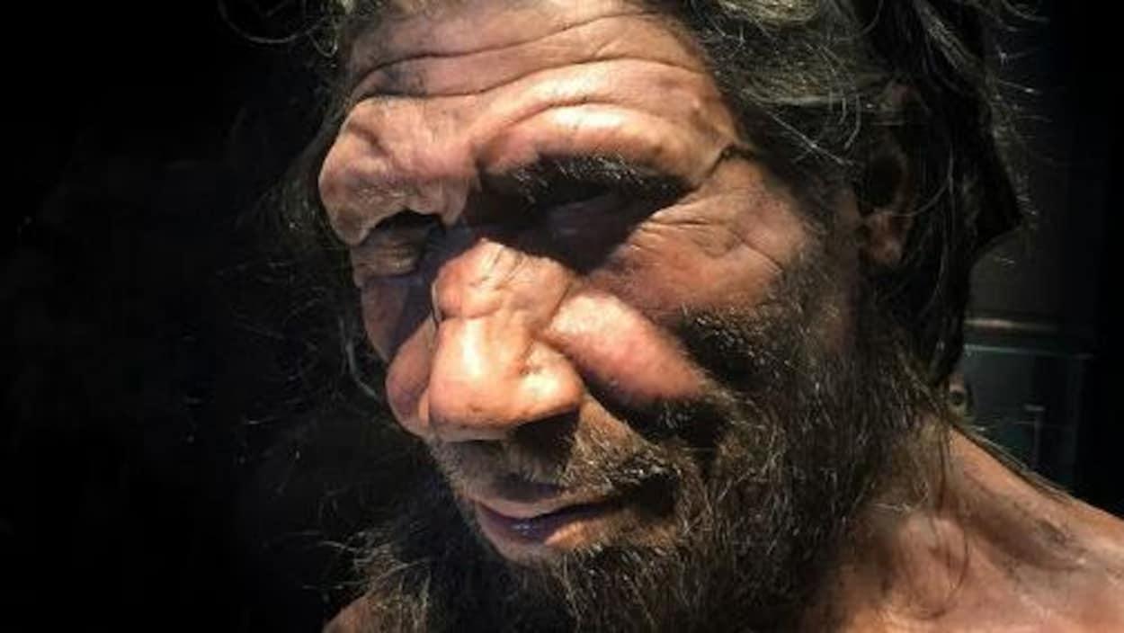 Gros plan sur le visage d'un Néandertalien.