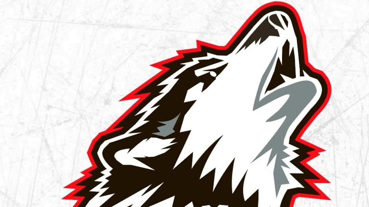 Image d'un chien-loup.