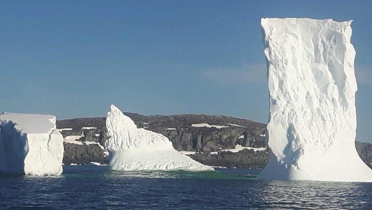 Trois icebergs près de la côte.