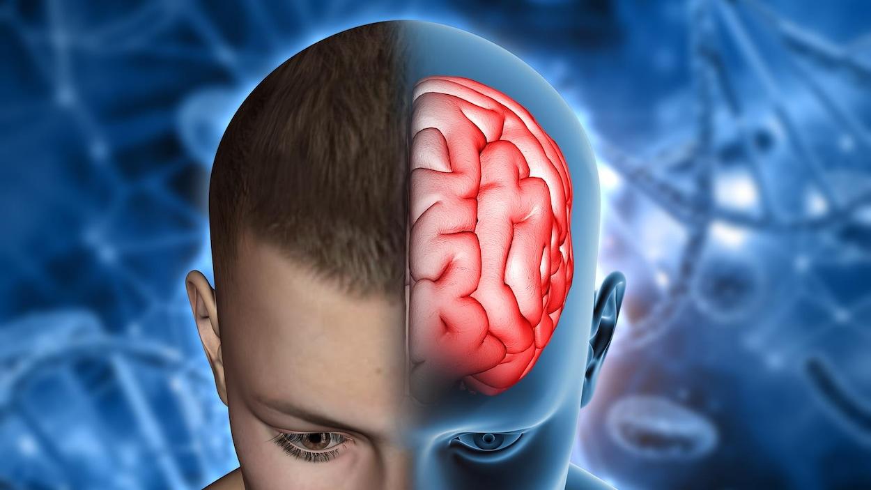 Illustration artistique montrant le cerveau dans la tête d'un jeune homme.
