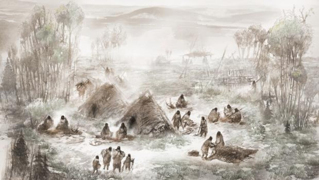 Illustration d'un peuplement ancien en Alaska