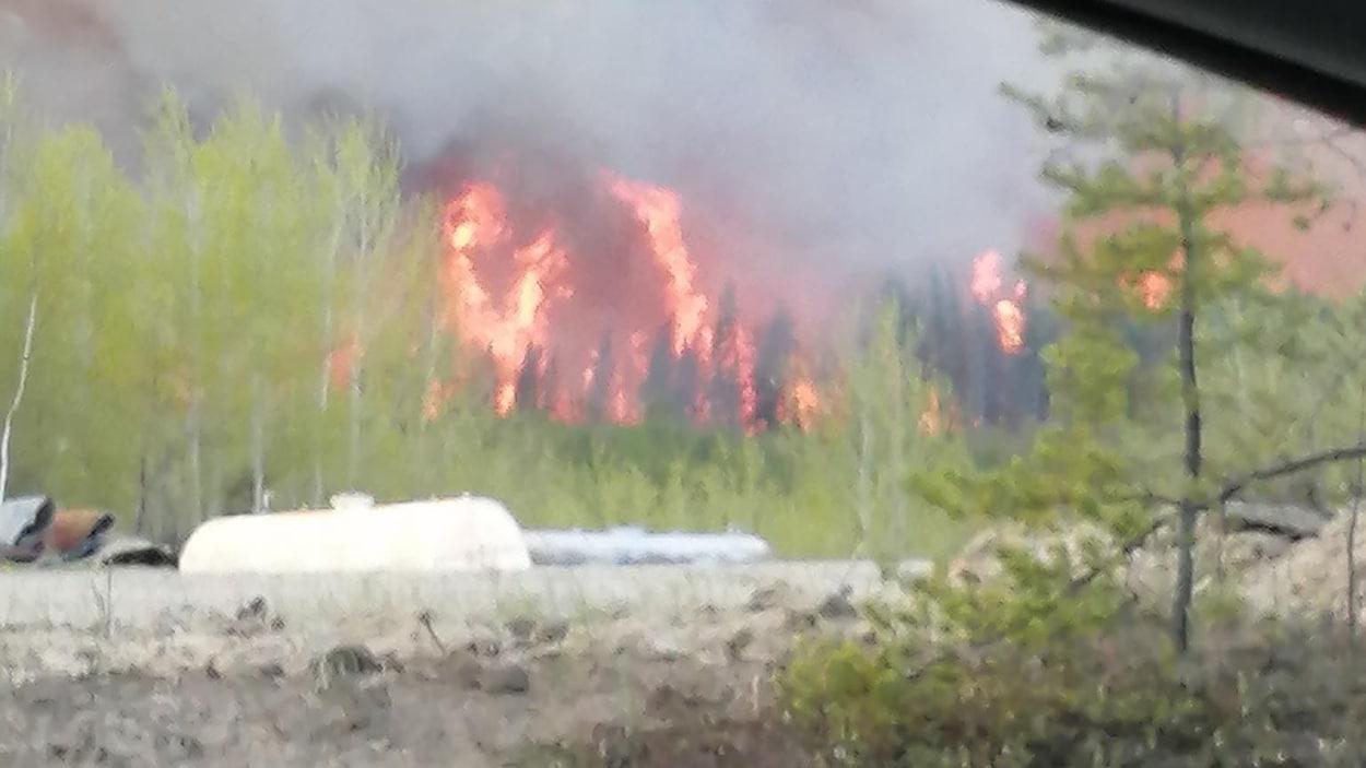 Un incendie de forêt.