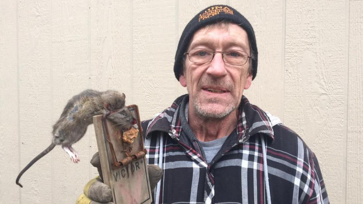 John Sullivan exhibe un rat mort la tête écrasée dans un piège.