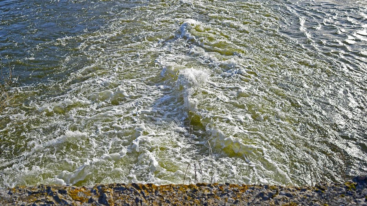 De l'eau qui bouillonne près de la rive