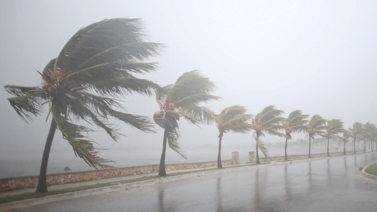 L'ouragan Irma s'est abattu vendredi soir sur Cuba, après s'être renforcé en tempête de catégorie 5.