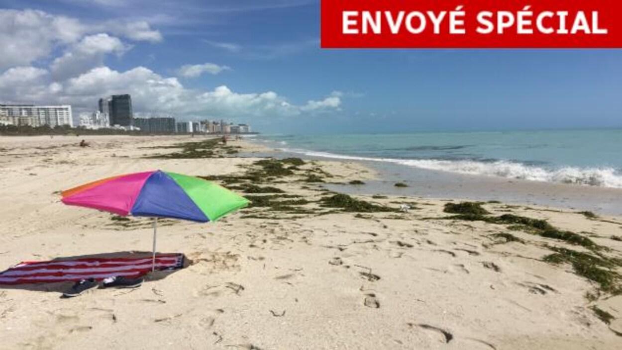Une plage de la Floride, après le passage de l'ouragan Irma