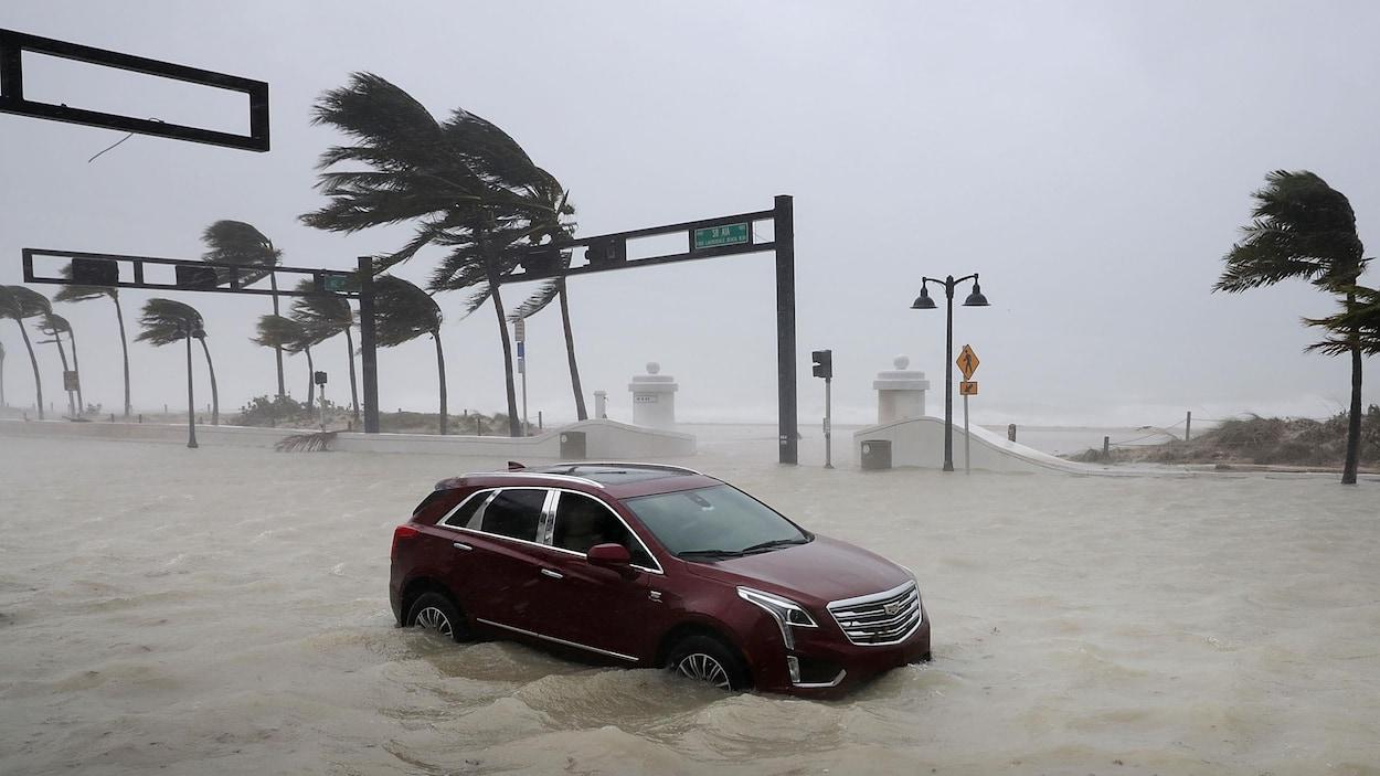 Le coût des catastrophes naturelles atteint un record en 2017 — États-Unis