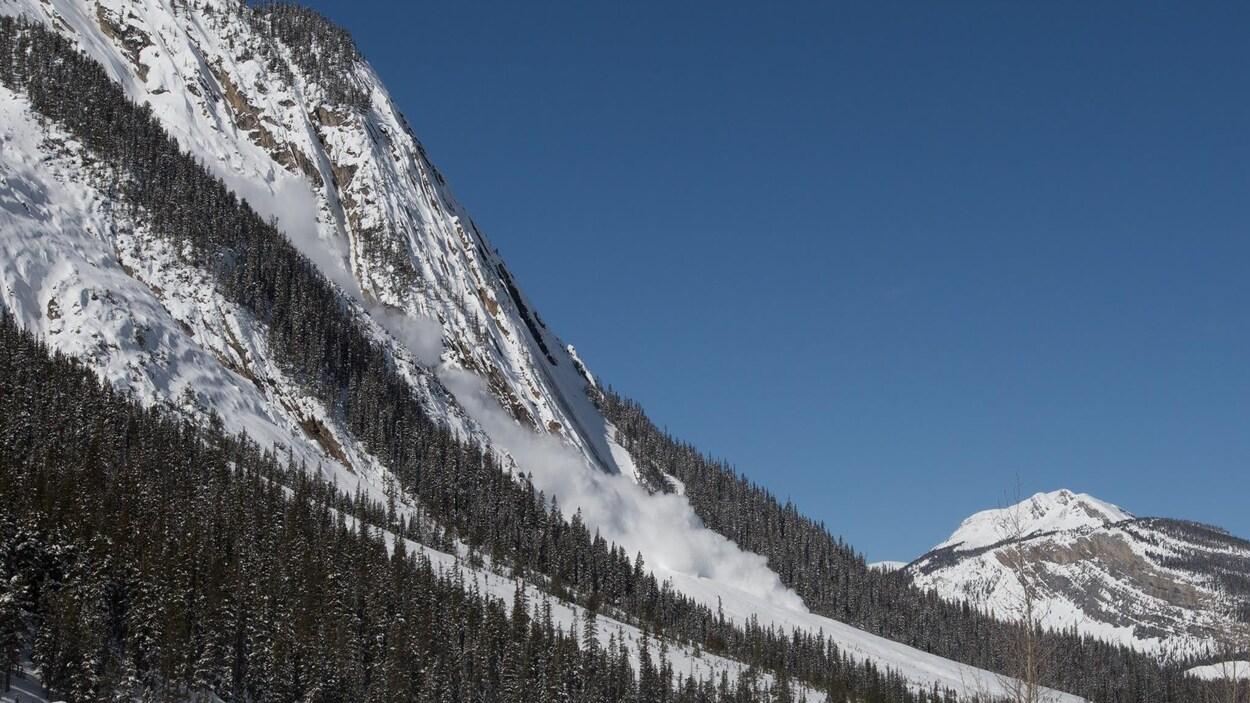 Une avalanche près de Down Mountain dans le parc national Jasper.