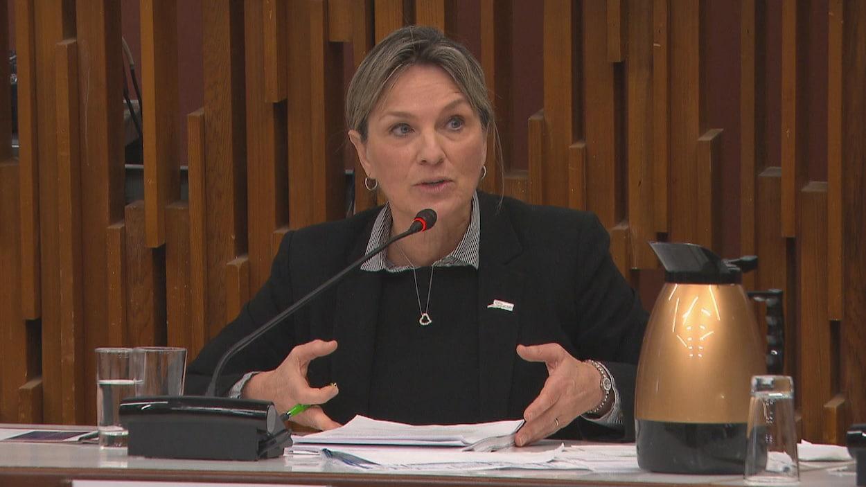 Josée Néron parle au micro à la table du conseil.