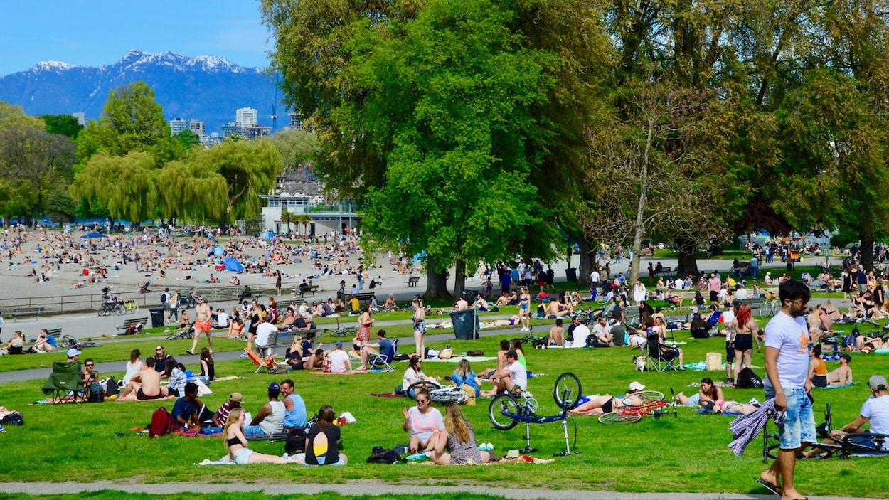 Des gens se reposent sur l'herbe à proximité d'une plage.