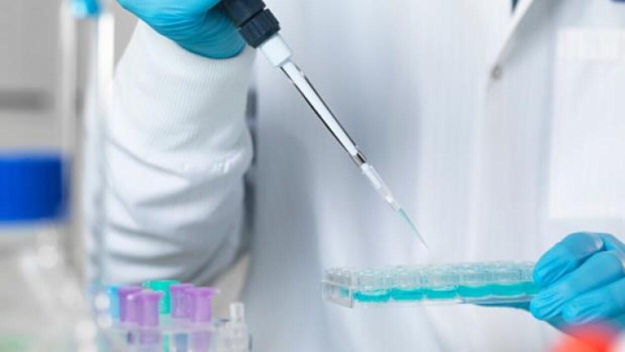 Un laborantin met du liquide bleu dans des tubes en verre avec une pipette/aiguille. Il porte des gants bleus en caoutchouc.