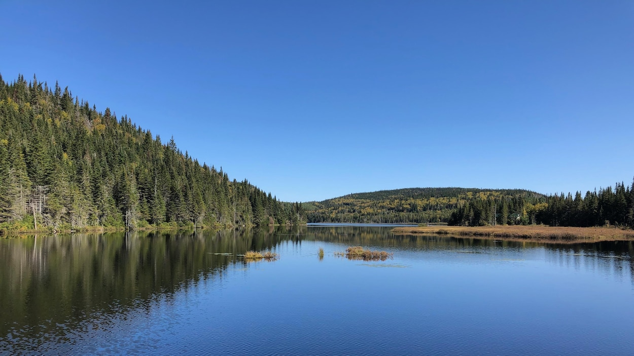 Un lac et un ciel bleu.