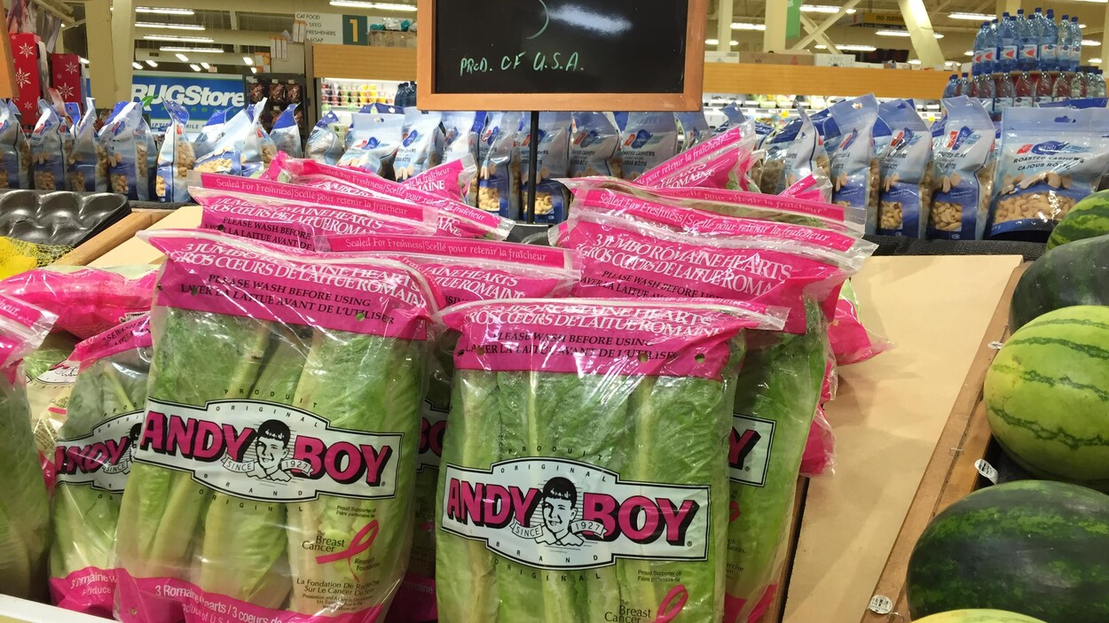 De la laitue romaine en sac, à l'épicerie.