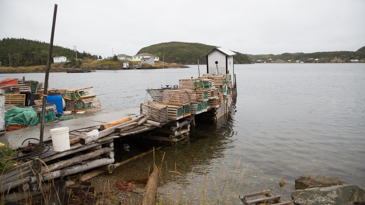 Un vieux quai en bois délabrés sur lequel sont déposés des casiers à homard.