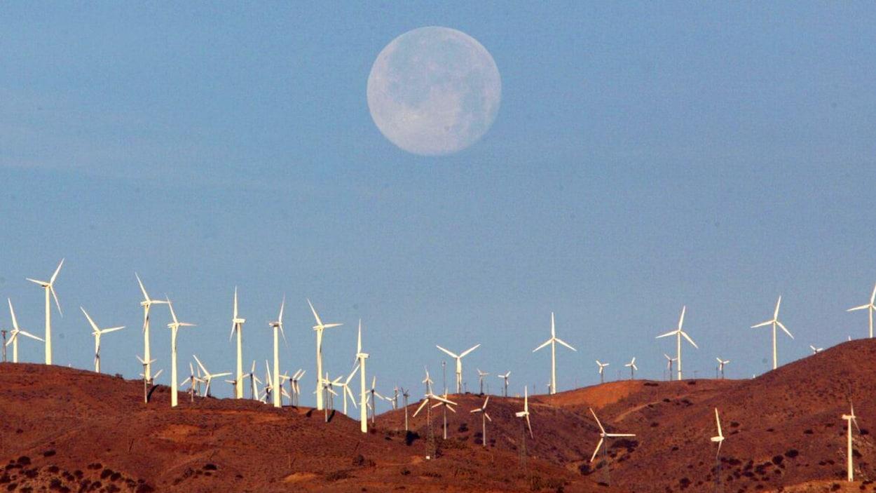 La lune est visible au-dessus d'un parc éolien.