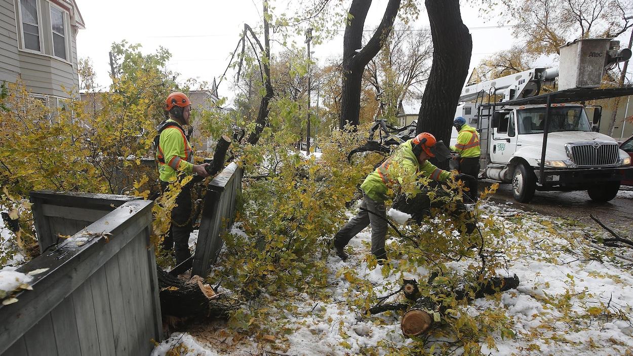 Une équipe technique s'emploie à nettoyer, à Winnipeg, au lendemain d'une tempête de neige.