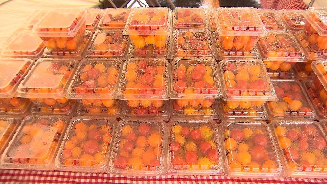 Des emballages en plastique de tomates cerises sont empilées sur une table recouverte d'une nappe carreautée.