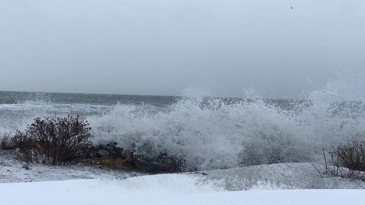 Les vagues déferlent le long de la côte