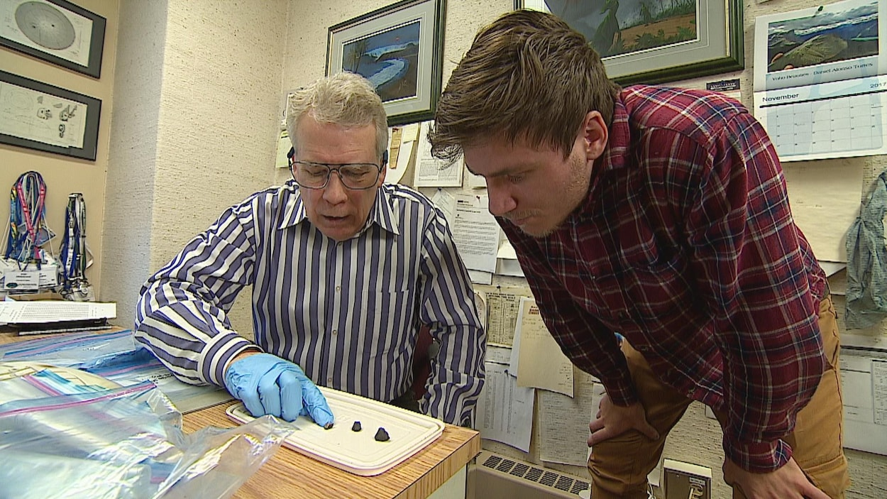 Une météorite est tombée le 4 septembre en laissant une trainée lumineuse qui a été vu en Alberta, en Colombie-Britannique et dans des parties du nord-ouest des États-Unis