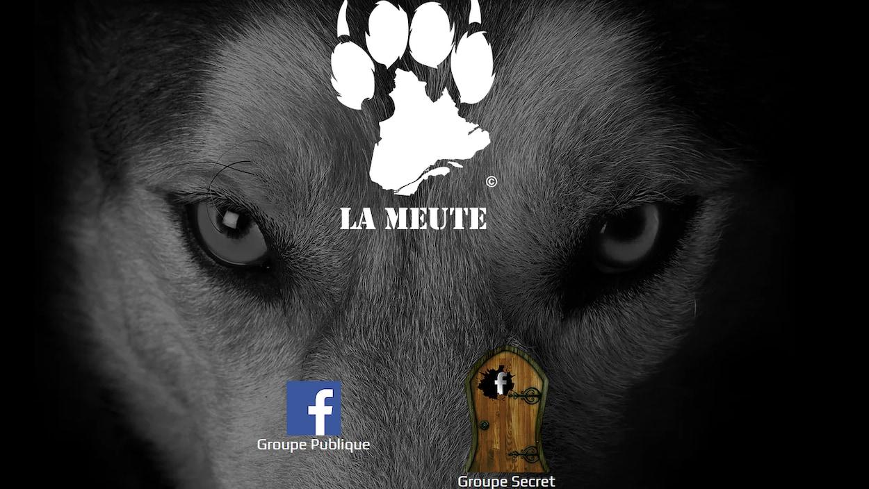 Le logo du groupe la Meute