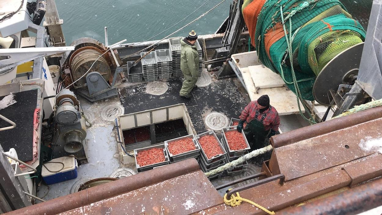 Les pêcheurs s'apprêtent à décharger le premier arrivage de crevettes au quai de Sept-Îles au matin de Pâques 2018.