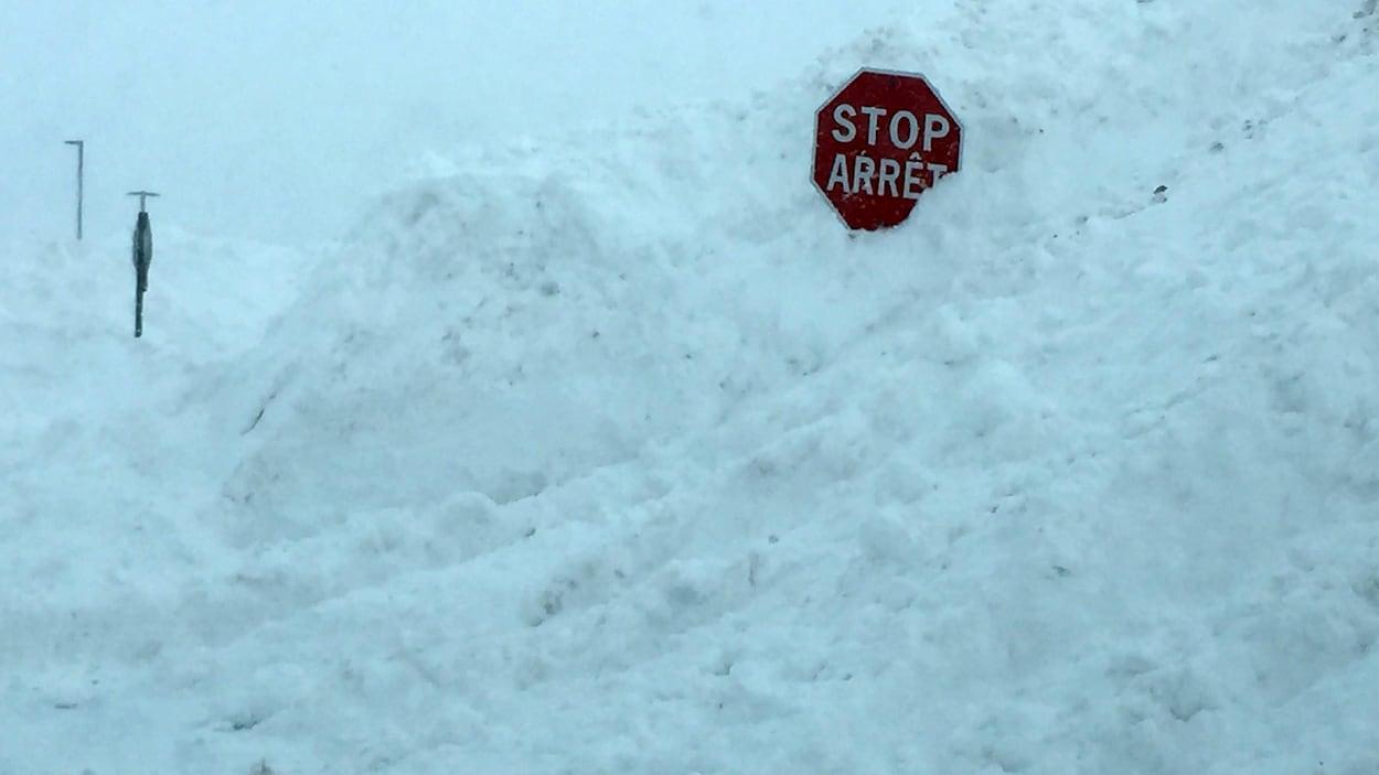 Des panneaux d'arrêt émergeant de la neige