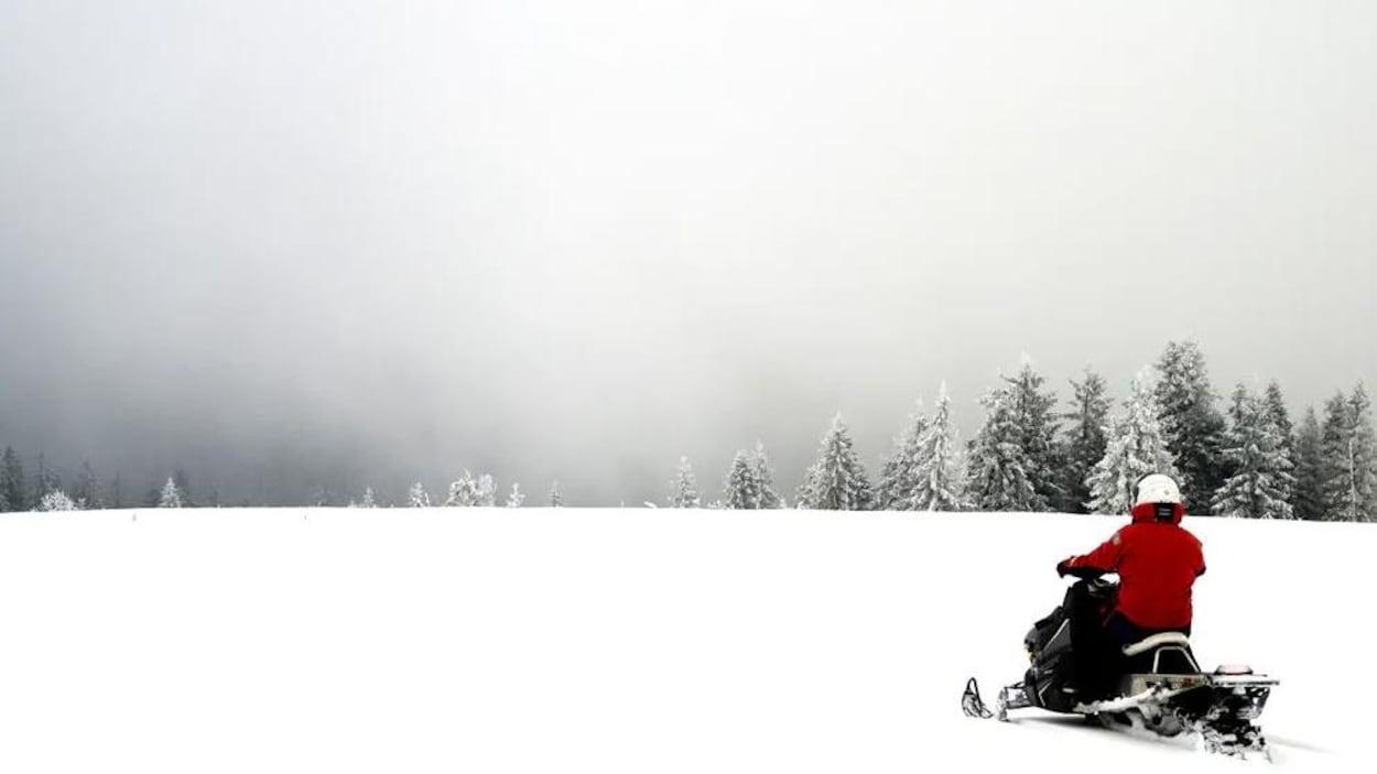 Un homme sur une motoneige dans un champ s'approche d'un secteur boisé