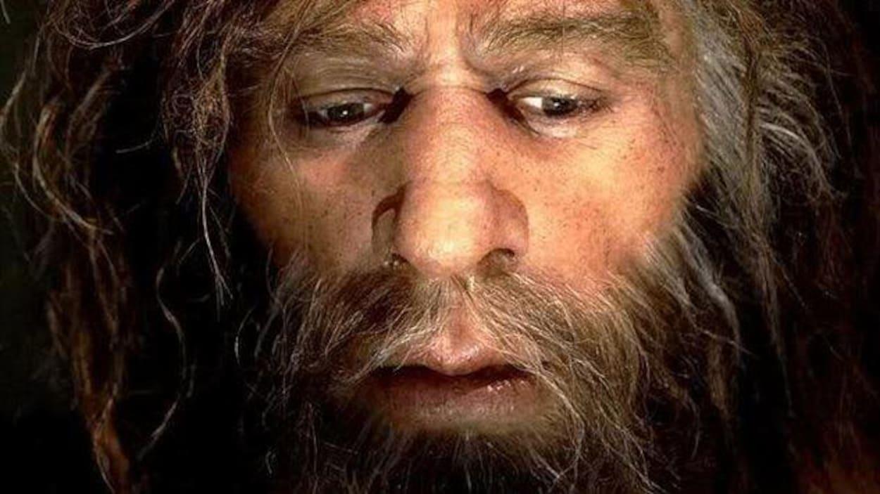 L'homme de Néandertal a transmis une partie de son patrimoine génétique à l'Homo sapiens.