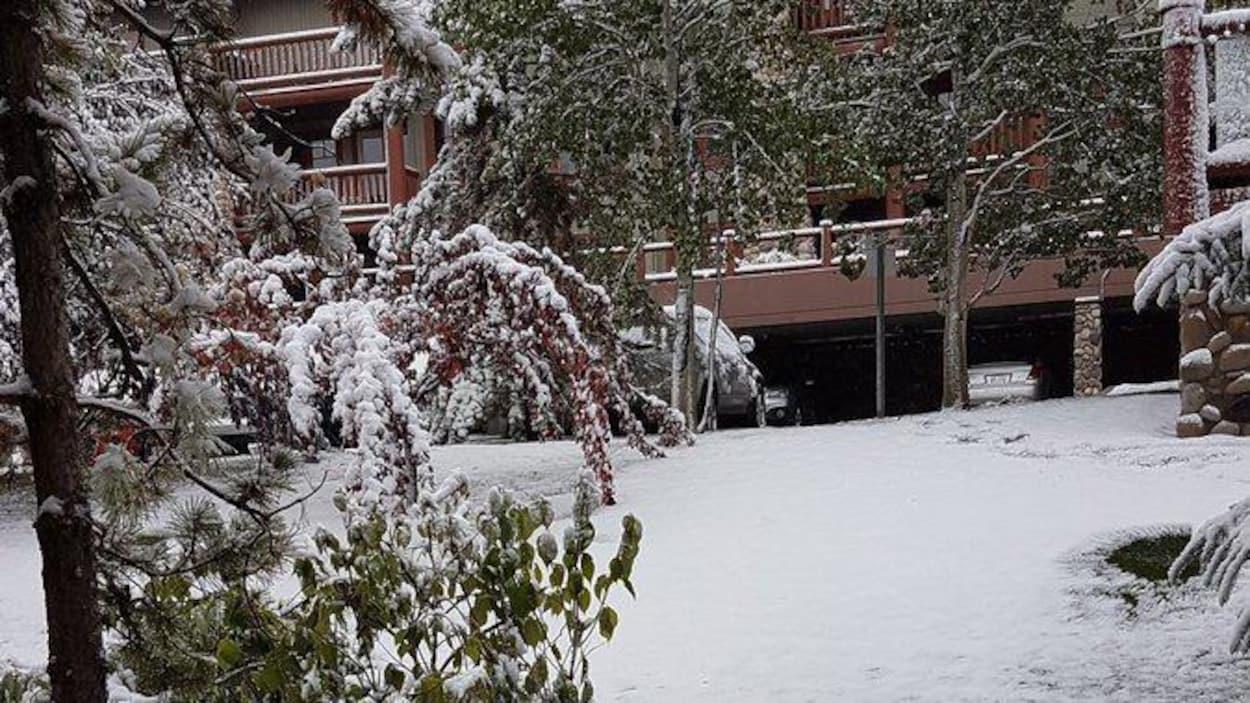 De la neige couvre le sol près d'une habitation à plusieurs étages.