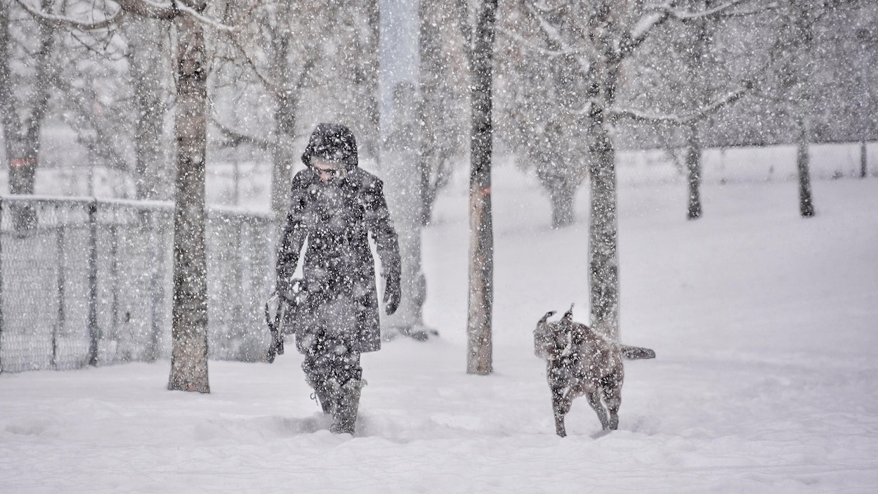 On distingue, à travers la neige qui tombe abondamment, une femme et un chien qui se baladent dans un parc.