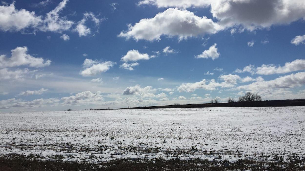 Un champ couvert de neige à perte de vue, sous un ciel bleu et quelques nuages.