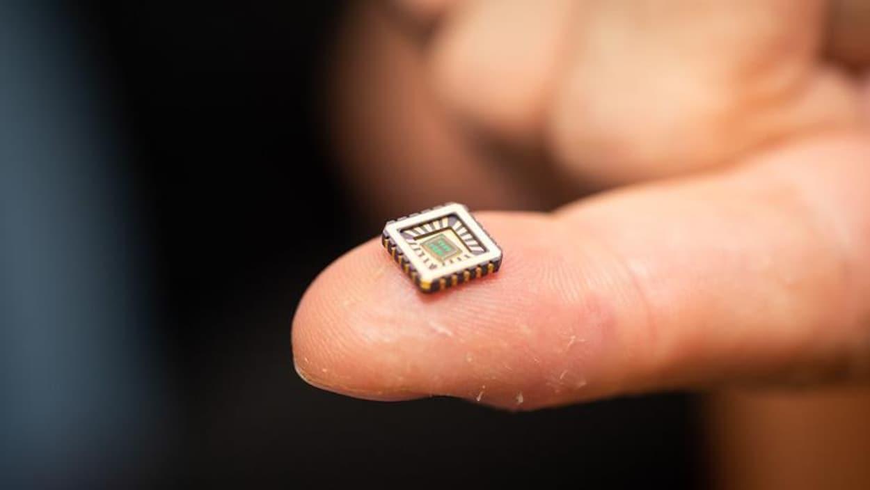 Ce qui ressemble à une micropuce est placé sur le bout d'un doigt.