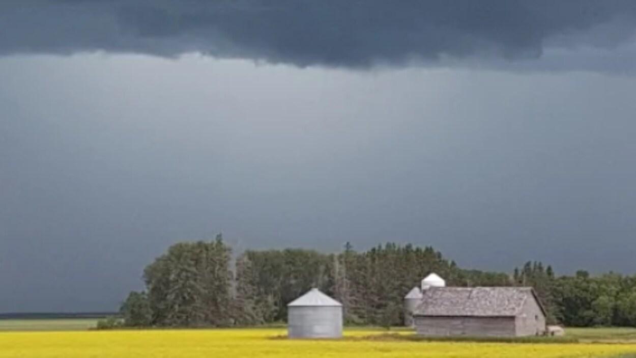 Des nuages noirs juste avant un orage planent au-dessus de trois silos et d'un bâtiment en bois construits dans un champ.