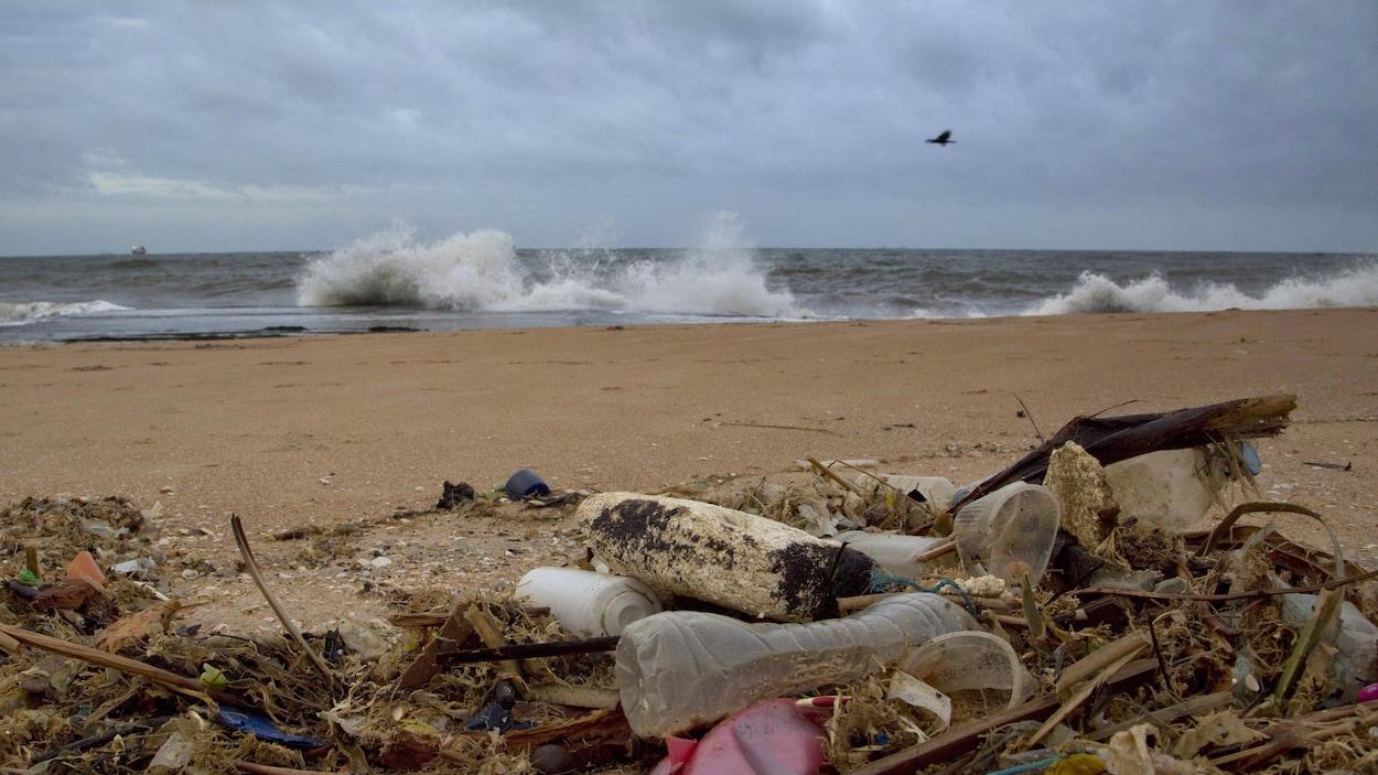 Des déchets de plastique jonchent la plage d'Uswetakeiyawa au Sri Lanka.