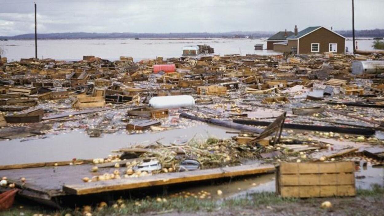De très nombreux débris sont éparpillés partout après un ouragan. On voit même de gros réservoirs de mazout.