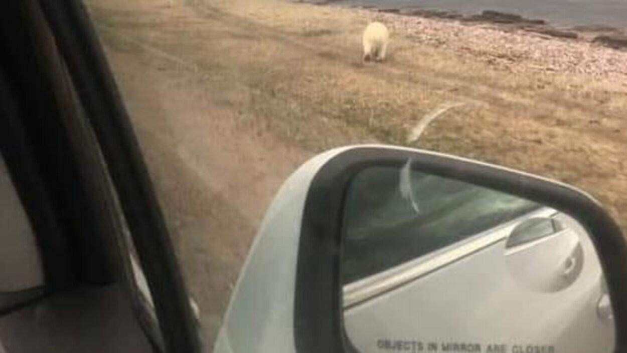 La photo est prise de l'intérieur du véhicule et l'on peut apercevoir le miroir sur la porte de la voiture.