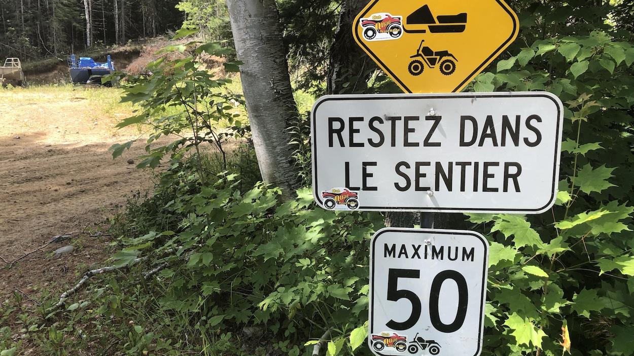 Des panneau dont un qui indique une limitation à 50 km/h.
